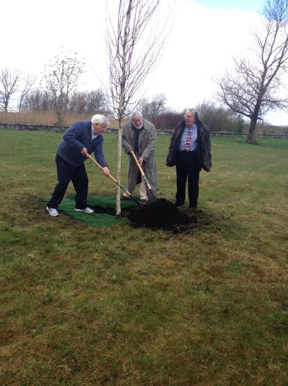 Author and musician Maidhc Danín Ò Sè, Poet Michael Longley, and Galway City Arts Officer James Harrold plant a tree.